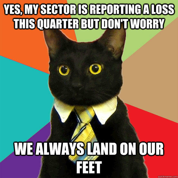 Yes, my sector is reporting a loss this quarter but don't worry we always land on our feet  Business Cat