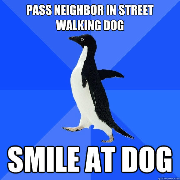 Pass neighbor in street walking dog SMILE AT DOG - Pass neighbor in street walking dog SMILE AT DOG  Socially Awkward Penguin