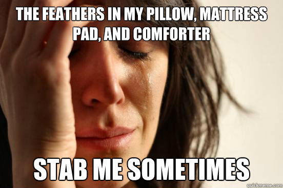 the feathers in my pillow, mattress pad, and comforter stab me sometimes - the feathers in my pillow, mattress pad, and comforter stab me sometimes  First World Problems
