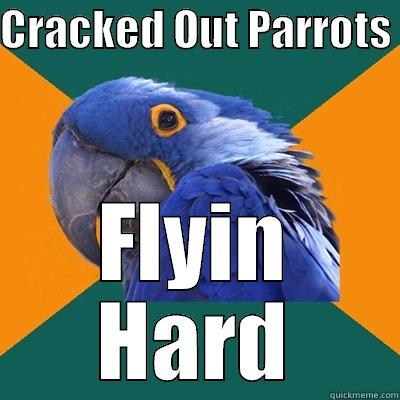 CRACKED OUT PARROTS  FLYIN HARD Paranoid Parrot