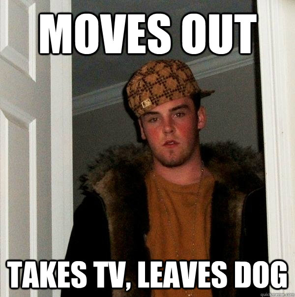 MOVES OUT TAKES TV, LEAVES DOG - MOVES OUT TAKES TV, LEAVES DOG  Misc