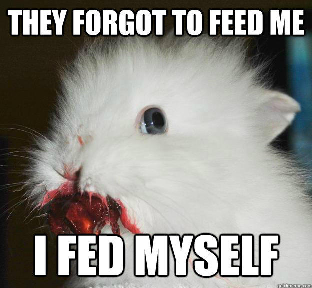 They forgot to feed me i fed myself