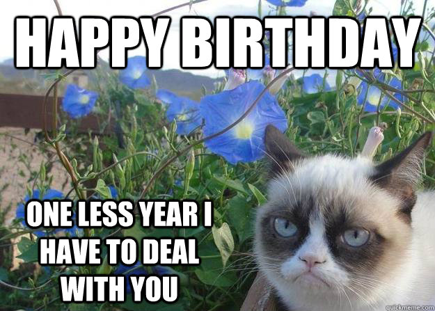 Birthday Meme Grumpy Cat Happy birthday one les...