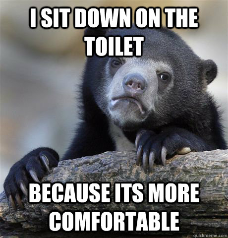 I sit down on the toilet because its more comfortable  Confession Bear