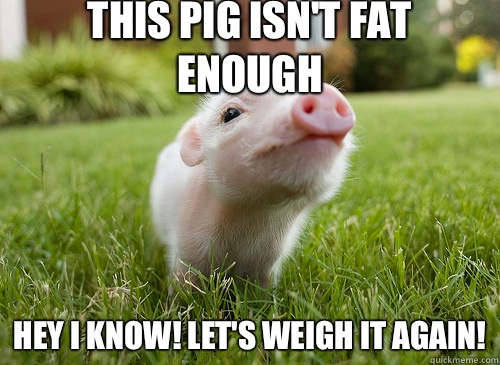 This pig isn't fat enough Hey I know! Let's weigh it again!