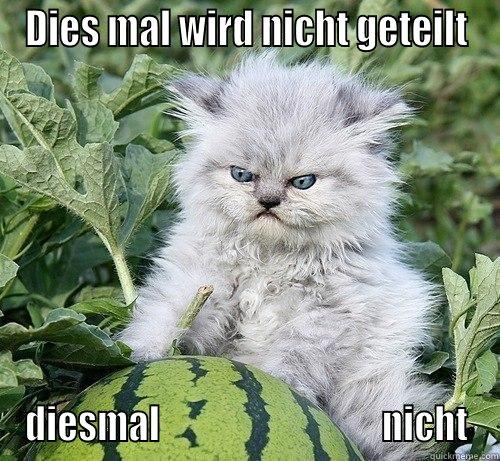 DIES MAL WIRD NICHT GETEILT DIESMAL                               NICHT German Kitty