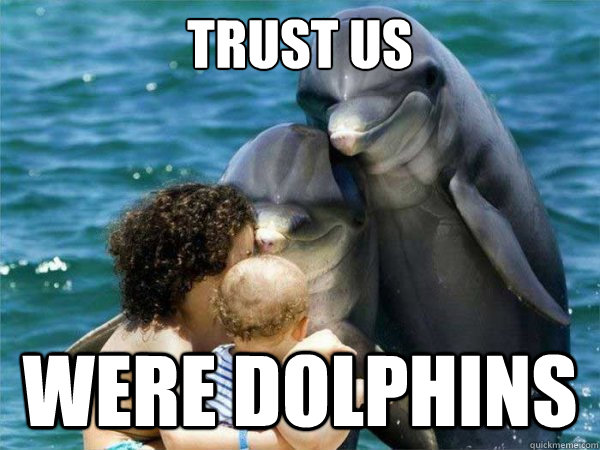 Trust us  Were dolphins