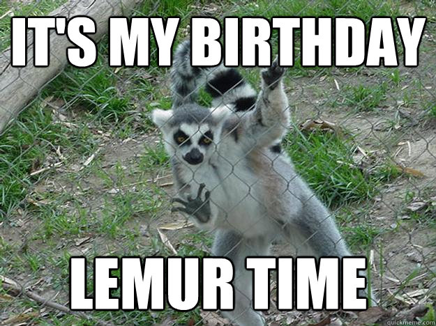 It's my birthday Lemur time  Libertarian Lemur