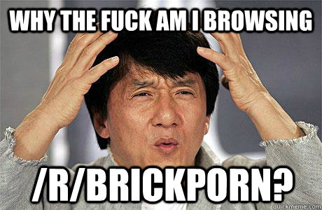 why the fuck am i browsing  /r/brickporn?
