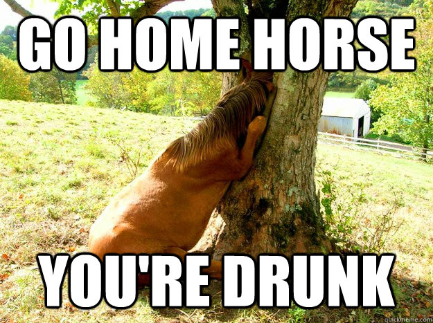 Go home horse You're drunk - Go home horse You're drunk  Misc