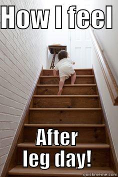 After leg day - HOW I FEEL  AFTER LEG DAY! Misc