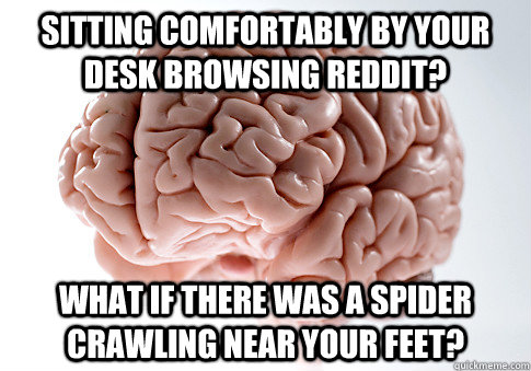 sitting comfortably by your desk browsing reddit? what if there was a spider crawling near your feet? - sitting comfortably by your desk browsing reddit? what if there was a spider crawling near your feet?  Scumbag Brain