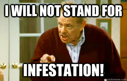 i will not stand for infestation!  Frank Costanza