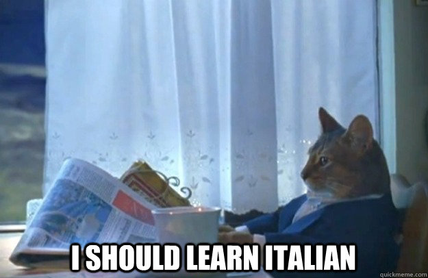 I should learn Italian -  I should learn Italian  Sophisticated Cat