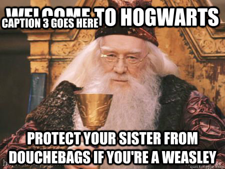 Welcome to Hogwarts Protect your sister from douchebags if you're a weasley Caption 3 goes here - Welcome to Hogwarts Protect your sister from douchebags if you're a weasley Caption 3 goes here  Drew Dumbledore