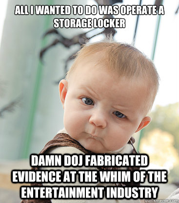All I wanted to do was operate a storage locker Damn DOJ fabricated evidence at the whim of the entertainment industry - All I wanted to do was operate a storage locker Damn DOJ fabricated evidence at the whim of the entertainment industry  skeptical baby