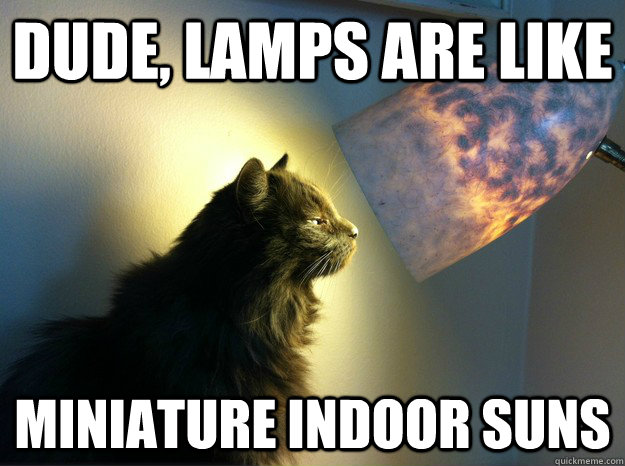 Dude, lamps are like miniature indoor suns - Dude, lamps are like miniature indoor suns  Misc