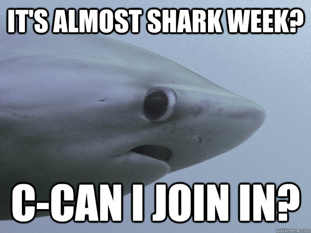 It's Almost Shark Week? C-can i join in?