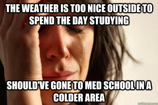 the weather is too nice outside to spend the day studying should've gone to med school in a colder area - the weather is too nice outside to spend the day studying should've gone to med school in a colder area  First World Problems