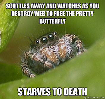 scuttles away and watches as you destroy web to free the pretty butterfly  starves to death  Misunderstood Spider