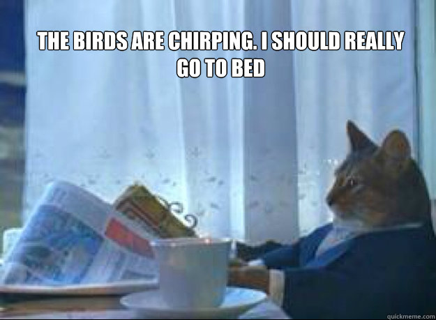 The birds are chirping. I should really go to bed I should really go to bed