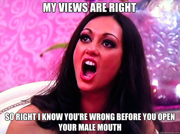 My views are right  so right I know you're wrong before you open your male mouth - My views are right  so right I know you're wrong before you open your male mouth  Feminist Nazi