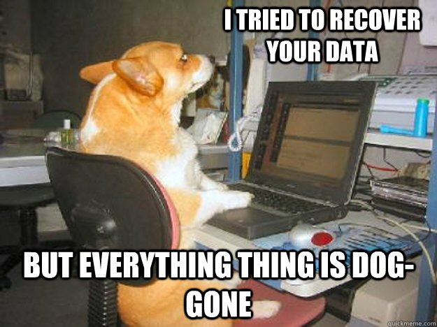 I tried to recover your data But everything thing is dog-gone