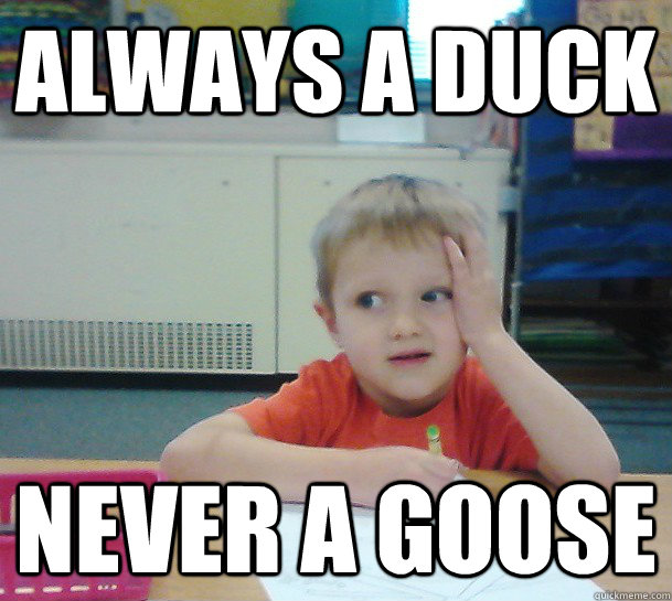 Always a duck Never a goose - Always a duck Never a goose  Misc