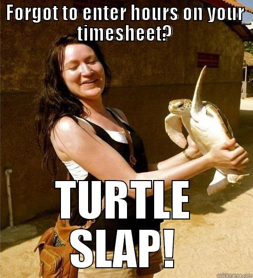Get Paid - FORGOT TO ENTER HOURS ON YOUR TIMESHEET? TURTLE SLAP! Turtle Slap