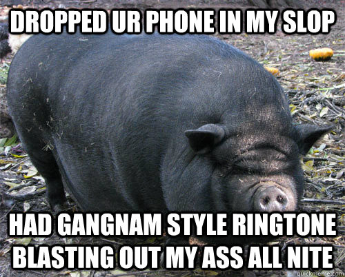 dropped ur phone in my slop had gangNam style ringtone blasting out my ass all nite - dropped ur phone in my slop had gangNam style ringtone blasting out my ass all nite  implacable pig