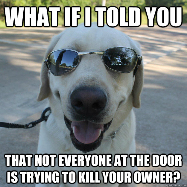 What if i told you that not everyone at the door is trying to kill your owner? - What if i told you that not everyone at the door is trying to kill your owner?  Morpheus Dog
