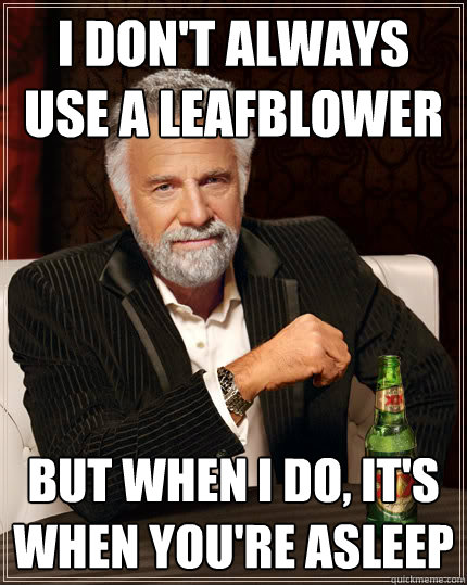 I don't always use a leafblower but when i do, it's when you're asleep