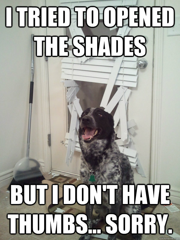 I tried to opened the shades but I don't have thumbs... Sorry.