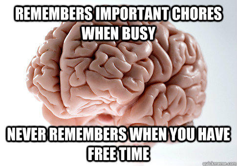 remembers important chores when busy never remembers when you have free time  - remembers important chores when busy never remembers when you have free time   Scumbag Brain