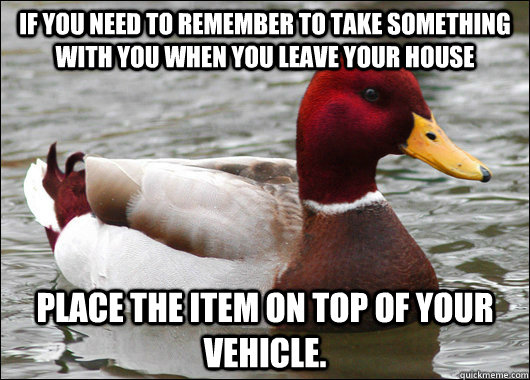 If you need to remember to take something with you when you leave your house place the item on top of your vehicle. - If you need to remember to take something with you when you leave your house place the item on top of your vehicle.  Malicious Advice Mallard