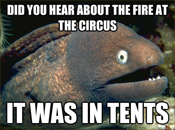 did you hear about the fire at the circus it was in tents - did you hear about the fire at the circus it was in tents  Bad Joke Eel