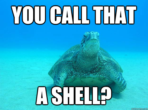 you call that  a shell? - you call that  a shell?  Misc