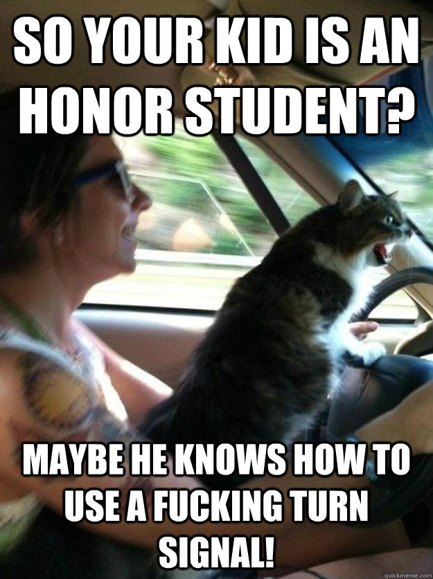 So your kid is an honor student? Maybe he knows how to use a fucking turn signal! - So your kid is an honor student? Maybe he knows how to use a fucking turn signal!  Road Rage Cat