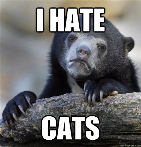 I hate cats - I hate cats  Confession Bear