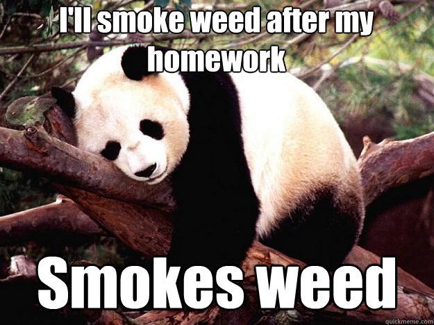 I'll smoke weed after my homework Smokes weed  Procrastination Panda