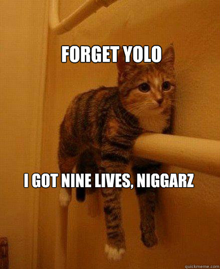 Forget yolo i got nine lives, niggarz - Forget yolo i got nine lives, niggarz  Monorail Cat