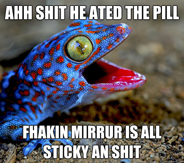Ahh Shit He ated The pill Fhakin mirrur is all sticky an shit - Ahh Shit He ated The pill Fhakin mirrur is all sticky an shit  Obnoxious Gecko At The Movies