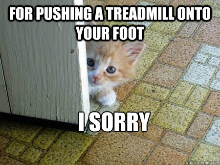 for pushing a treadmill onto your foot I Sorry   Sorry Cat