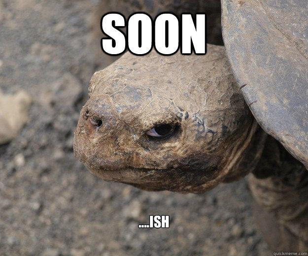 Soon ....ish