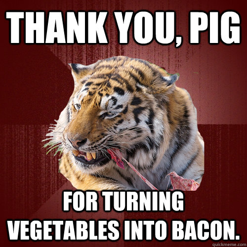 Thank you, pig For turning vegetables into bacon. - Thank you, pig For turning vegetables into bacon.  Keto Tiger