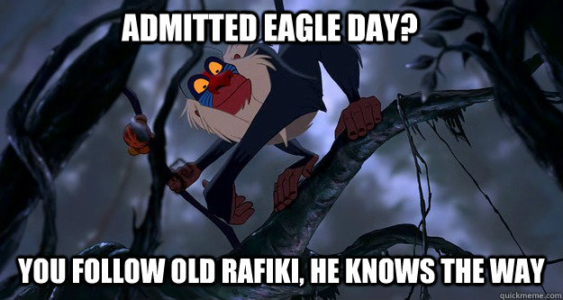 Admitted Eagle Day? You follow old Rafiki, he knows the way