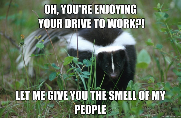 OH, You're enjoying  your drive to work?! LET ME GIVE YOU THE SMELL OF MY PEOPLE  Angry Skunk