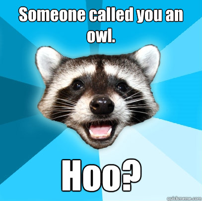Someone called you an owl. Hoo? - Someone called you an owl. Hoo?  Lame Pun Coon