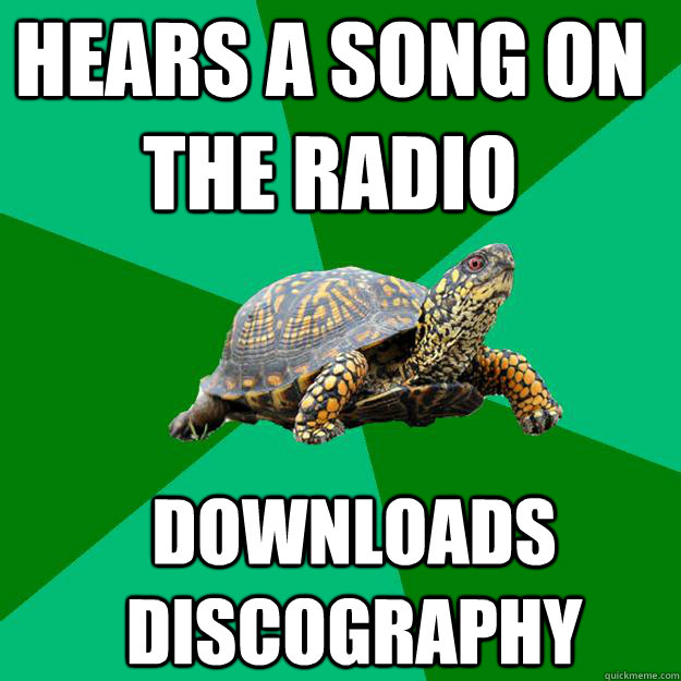 hears a song on the radio downloads discography  Torrenting Turtle