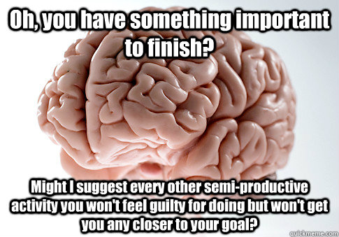 Oh, you have something important to finish? Might I suggest every other semi-productive activity you won't feel guilty for doing but won't get you any closer to your goal?  - Oh, you have something important to finish? Might I suggest every other semi-productive activity you won't feel guilty for doing but won't get you any closer to your goal?   Scumbag Brain